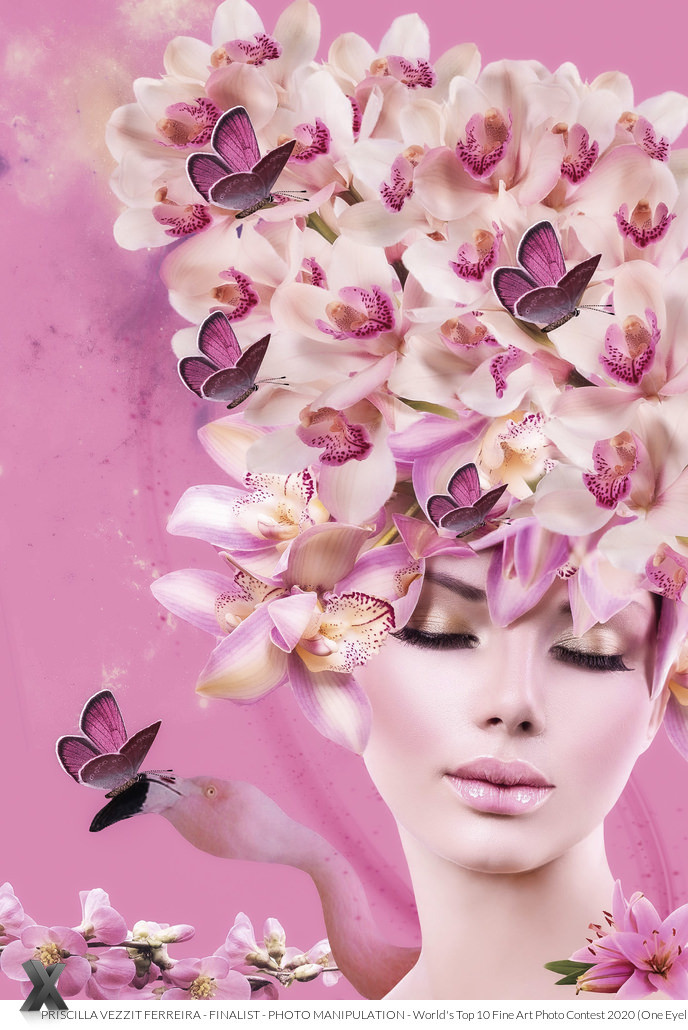 Pink Dreams Finalist - Photo Manipulation