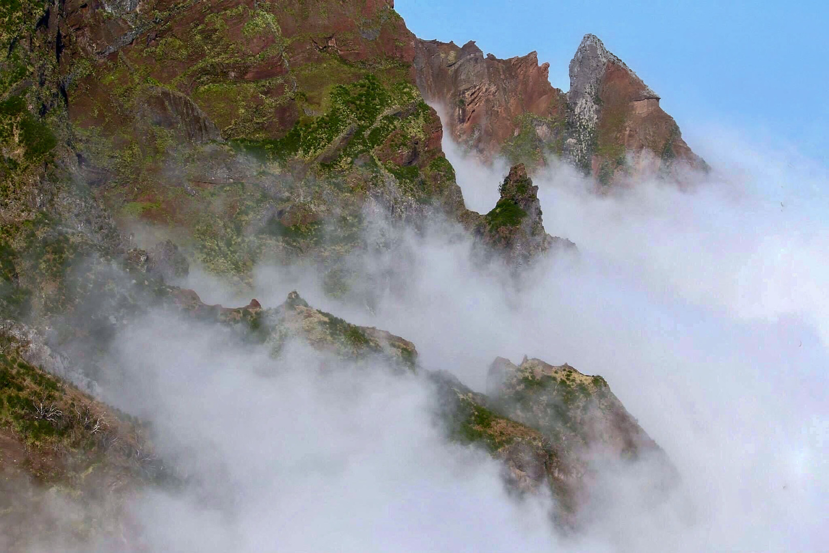 Blanket Nest - Madeira Island