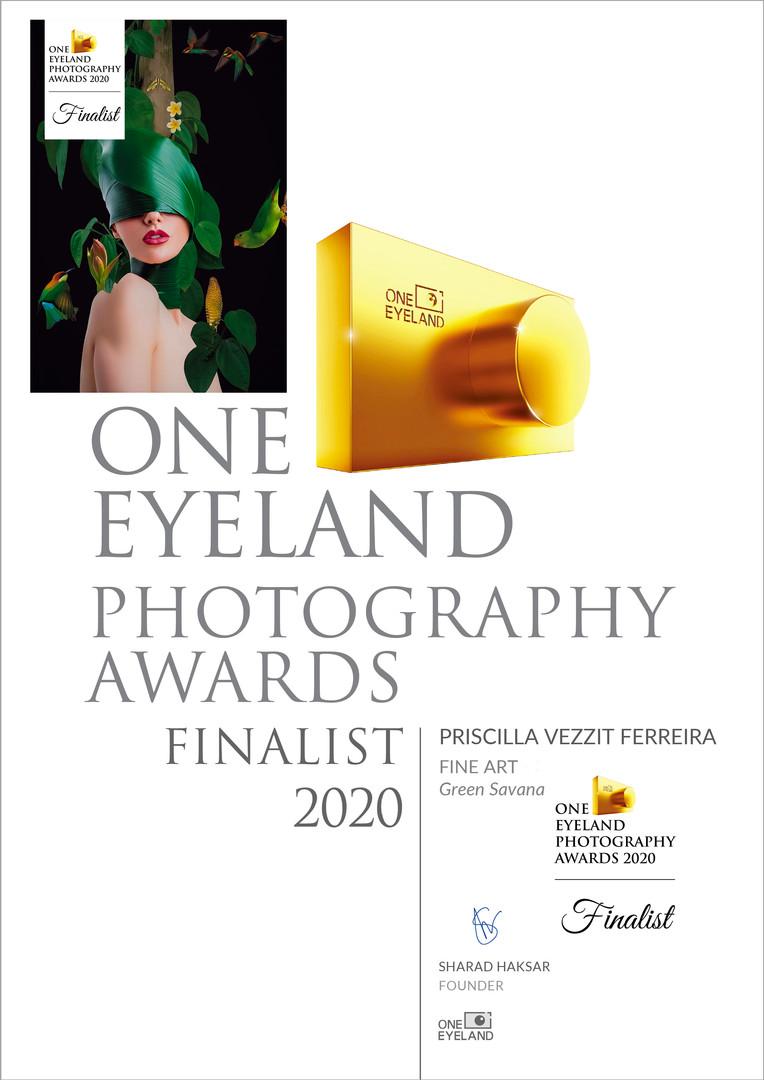 Green Savana - Finalist Awards