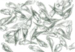 mes-anges-33x48cm.jpg