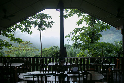 Eco-Logic's restauant: a meal with a view!