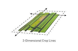 Crop Space Diagram-01.jpg