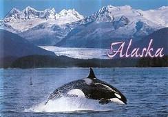 Alaska is wide open!!