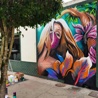 Grafite Orleans