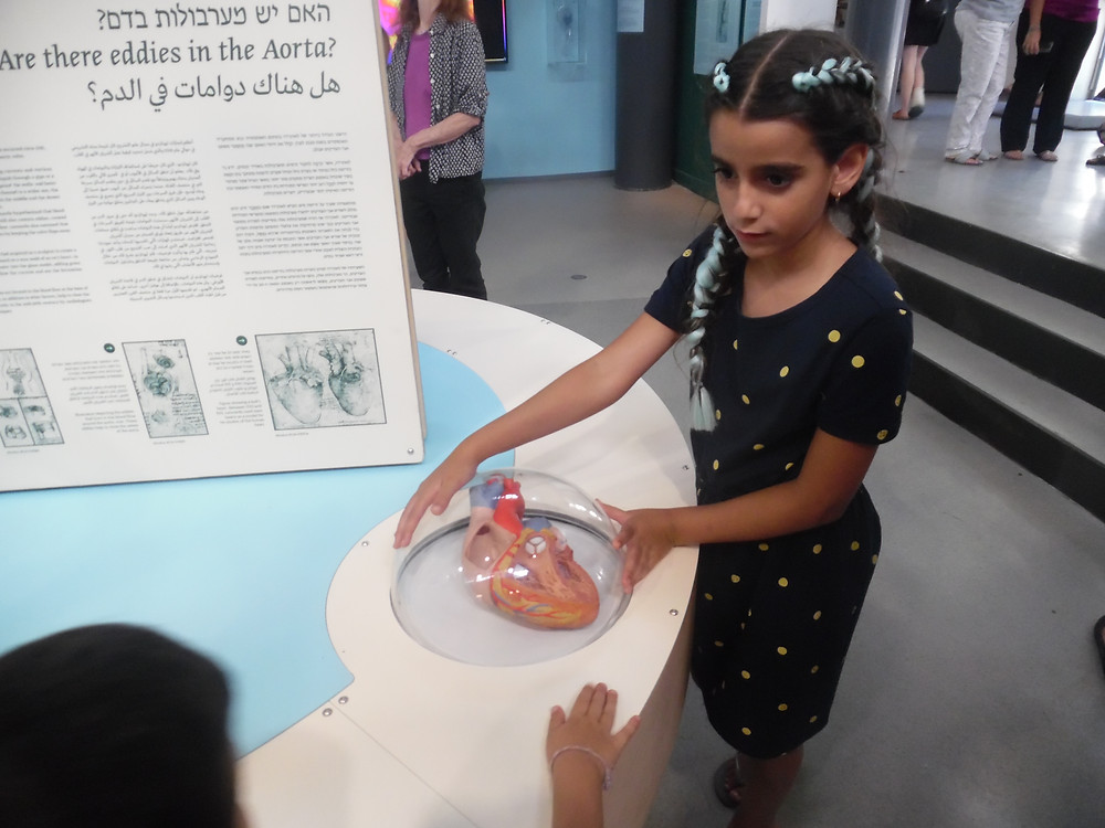 שירה לומדת על מערבולות הדם במוזיאון המדע. צילום:אושרת אביחצירה פרזם