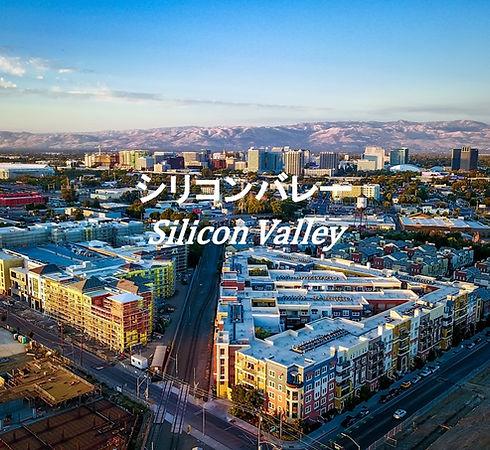 Silicon Valleyサイト用.jpg