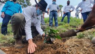 Llegan apoyos agro forestales al sur mexiquense