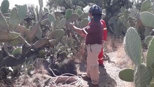 Rescatan a siete personas extraviadas dentro de una cueva en Teotihuacàn