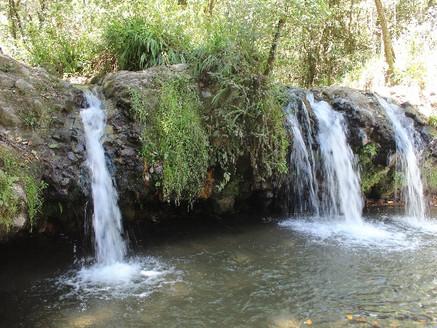 Coatepec Harinas, Pueblo con Encanto que resguarda la tradición de sus orígenes