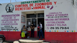 Zoonosis Chimalhuacán implementa acciones para reforzar el cuidado de mascotas