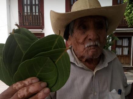 Admirable, a sus 86 años don Manuel Martínez aún se gana la vida en Tejupilco