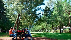 Sube a 80 por ciento aforo en parques, áreas naturales y zoológicos del Edoméx