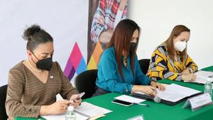 Efectúan sesión ordinaria del Observatorio de Participación Política de las Mujeres en el Edomex