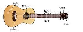 parts of a ukulele.jpg