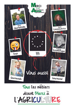 Affiche Polaroid Ensemble 4.jpg