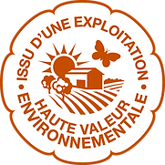 Logo HVE 2.png