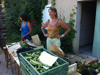 Premières distributions de légumes !