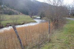 camping area cripple creek pickle's bott