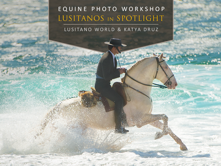 EQUINE PHOTO WORKSHOP IN PORTUGAL, MAY 2018