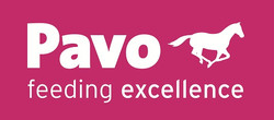 Pavo-Logo-2010 Slogan-darunter-1-kl