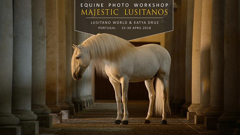 Equine photo workshop Majestic Lusitanos