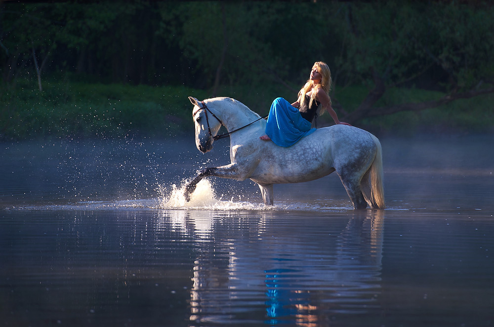 girl and white horse in the water