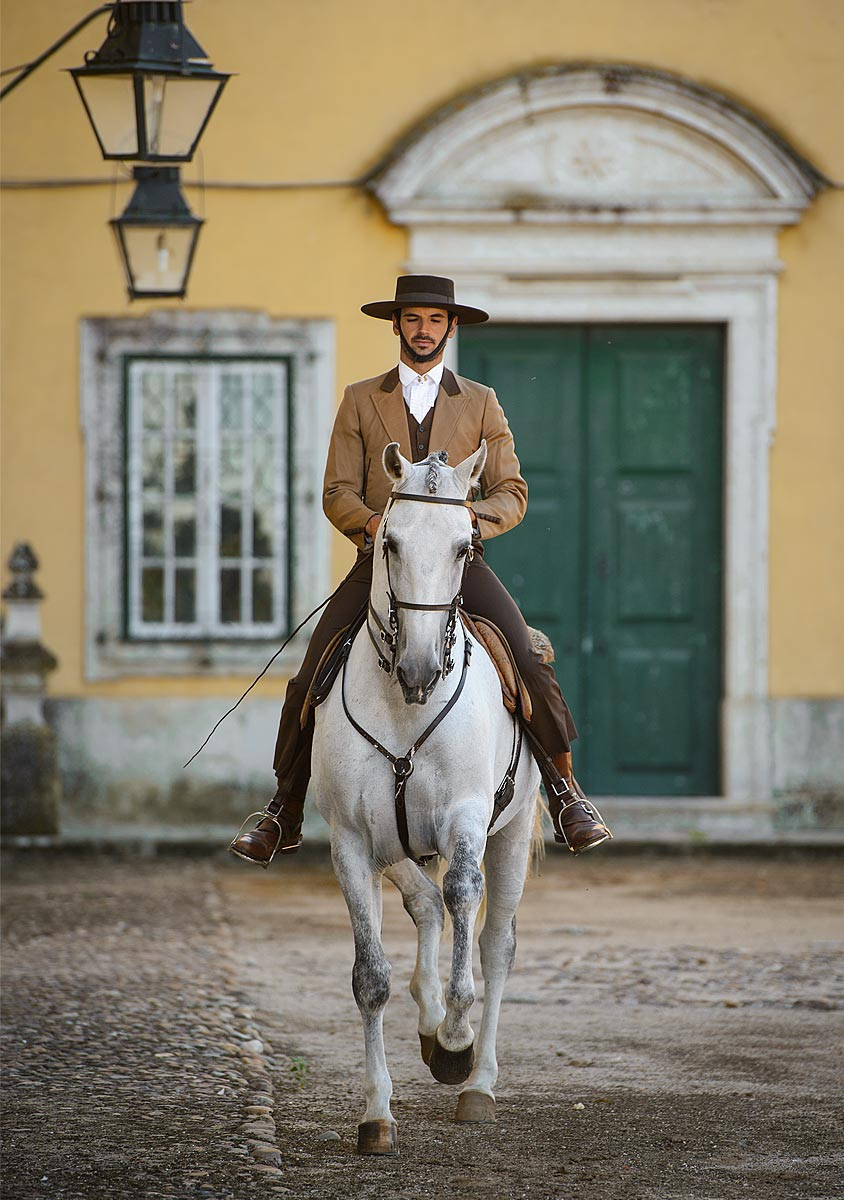 white lusitano horse and rider near traditional portuguese house