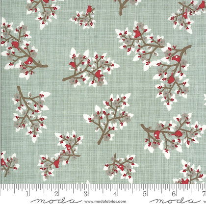 13201 15B Juniper Brushed Frost by Kate & Birdie Paper Company