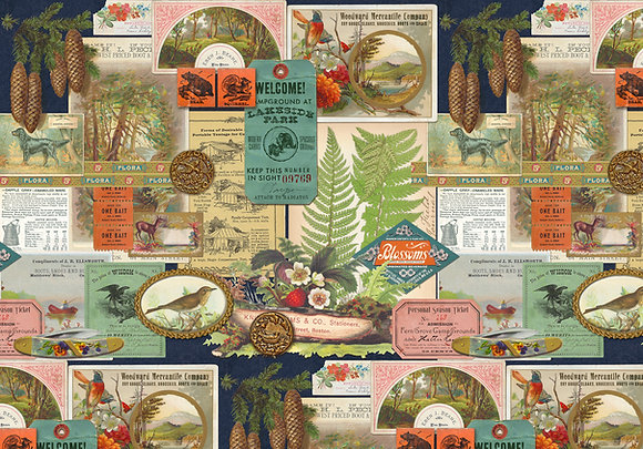 Night Sky Outdoorsy Collage 7381 15 by Cathe Holden/MODA