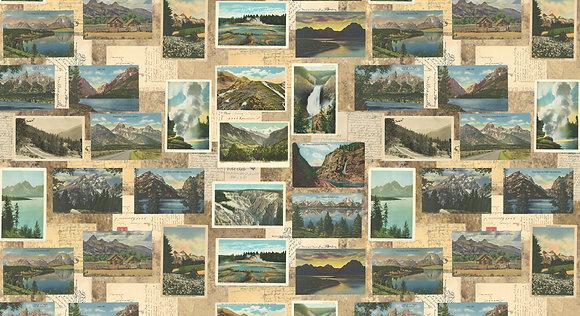 Tan Postcards Outdoorsy 7382 12 by Cathe Holden/MODA