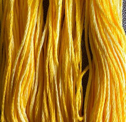 Saffron by Weeks Dye Works 5-Yard Skein