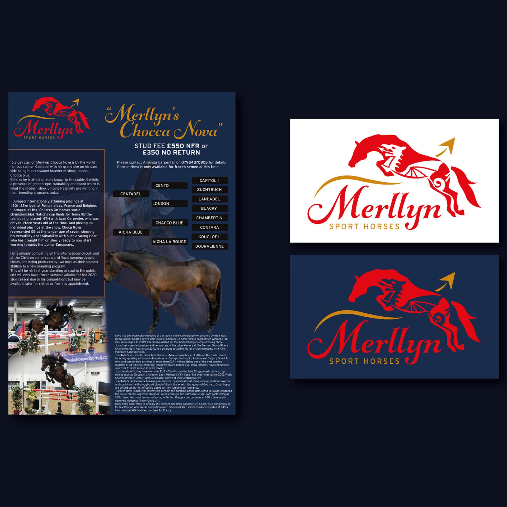 Merllyn Sport Horses