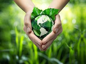green leaves and world.jpg