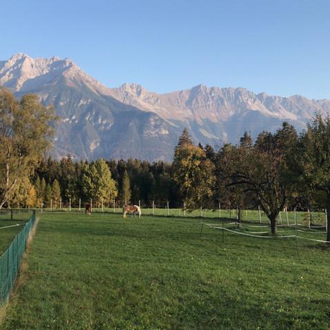 Herbstidylle mit Nordkette Innsbruck