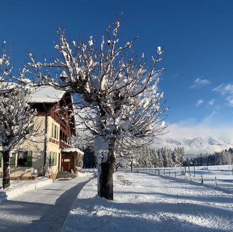 Winter  Eingang