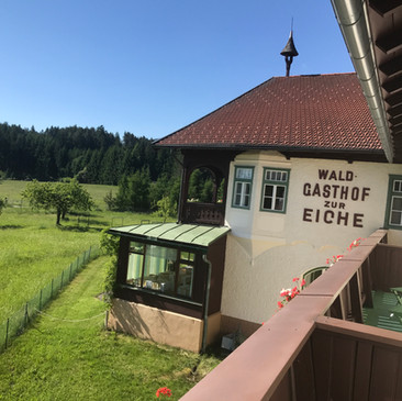 Sommer Wiesen und Wälder Balkon Panorama