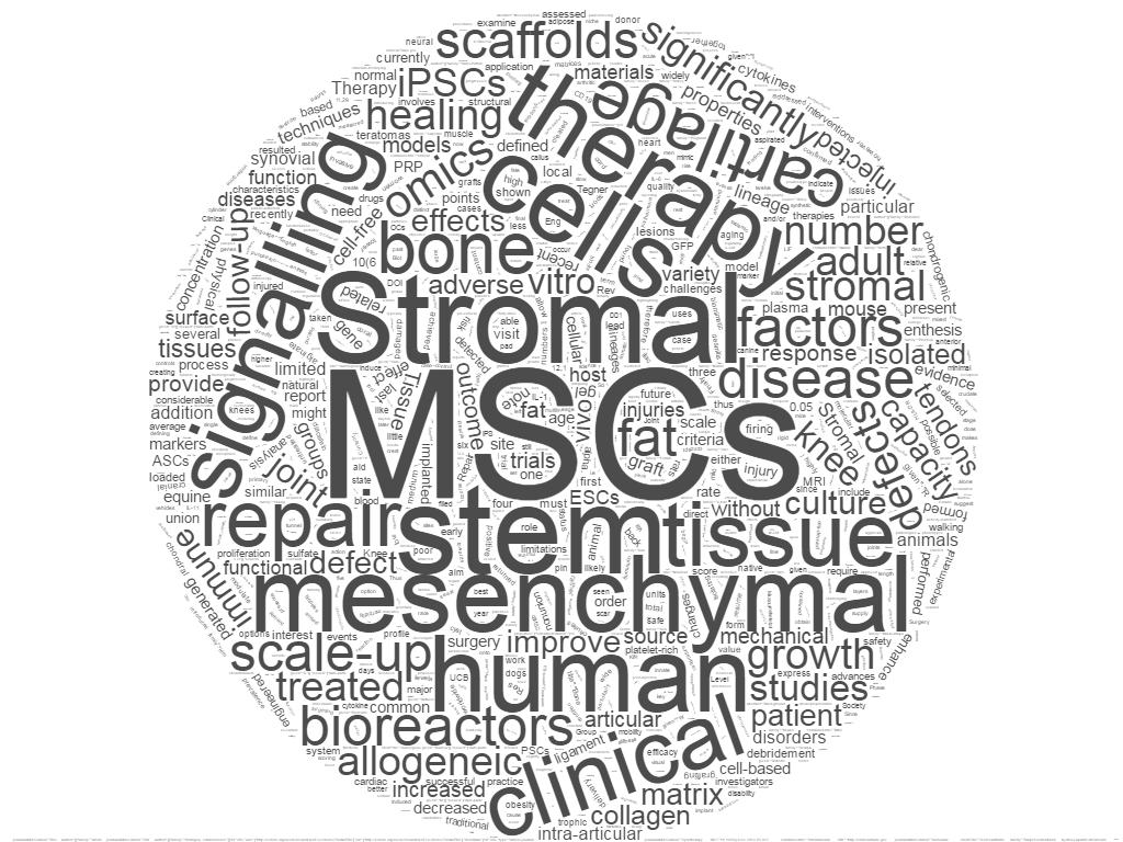 MSC word cloud3