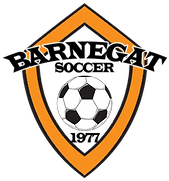 BSC Tranparent Logo with Soccer.png