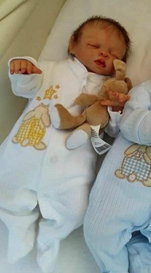 Dandelion Premature Baby Grow 1-2lb - 3 Colours