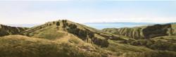 Palliser Bay, Wairarapa