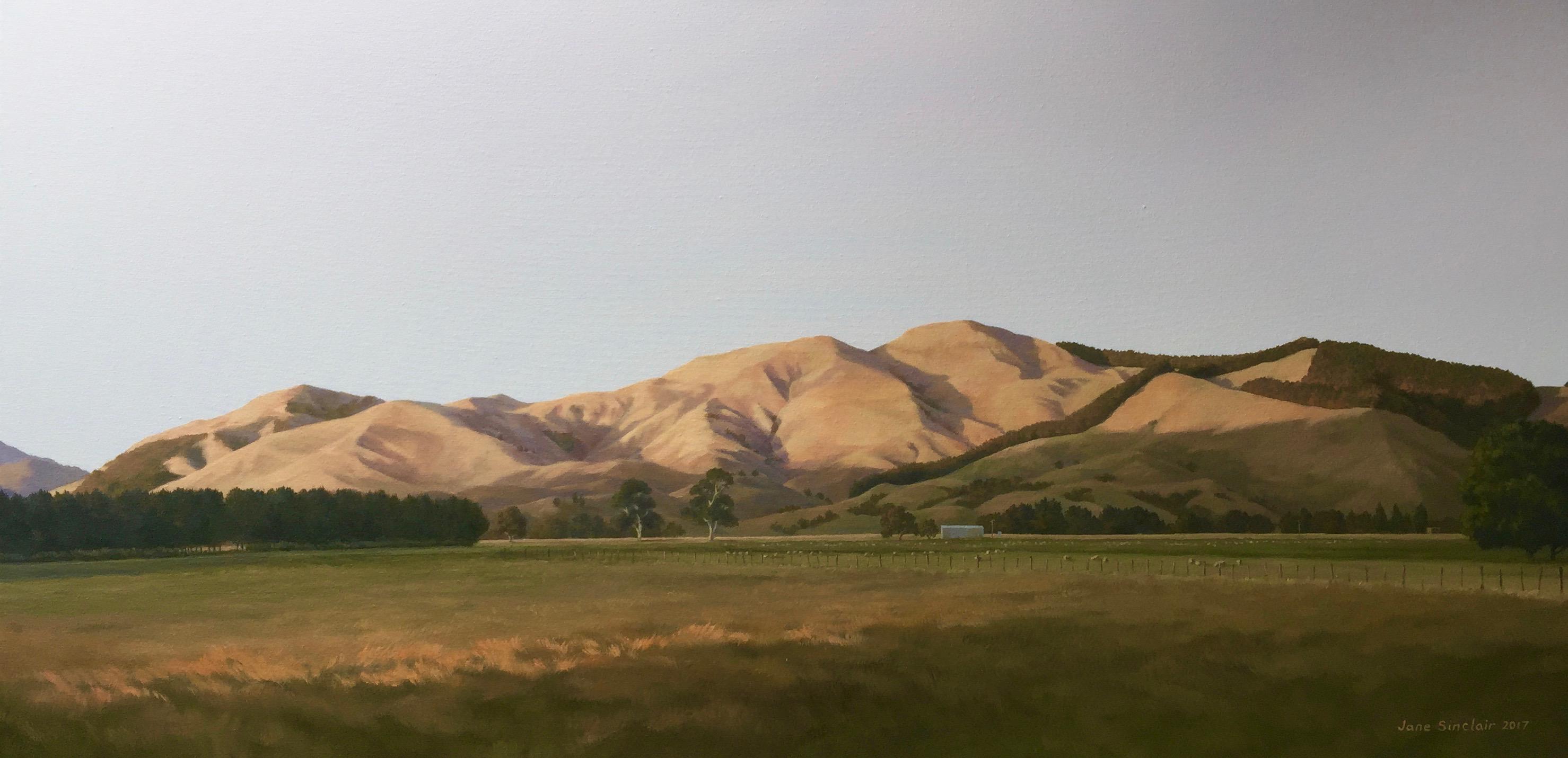 Summer hills, Wairarapa