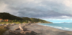 Eastbourne Beach, Wellington