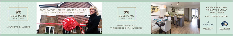 Mole Place