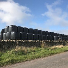 That's a lot of silage