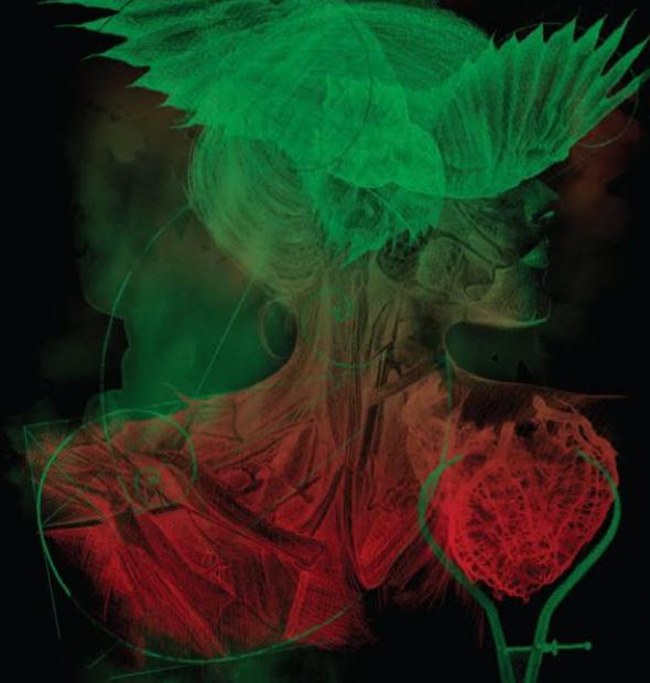 """""""Inside the Light Red and Green"""" 2020 - X Salão Internacional de Artes Visuais SINAP/AIAP Prêmio: 1º Lugar - Arte Digital"""
