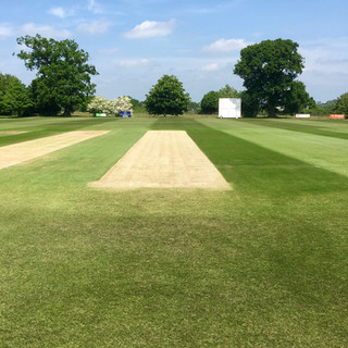 Wicket at Woolpit