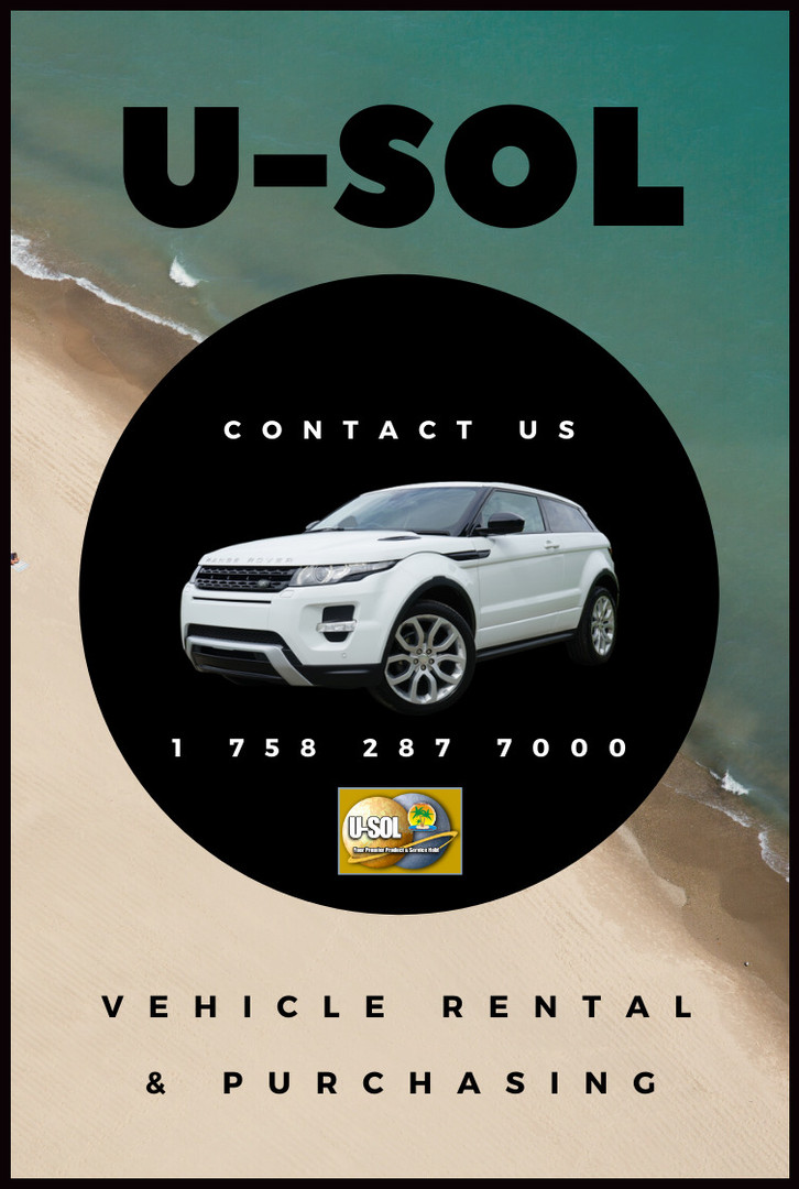 Rent or purchase your vehicle of choice with U-SOL NOW!