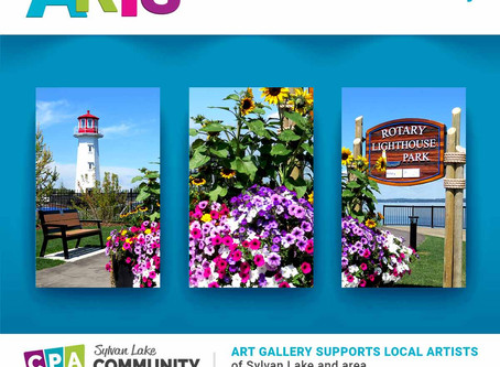 Arts Around The Lake & Gallery