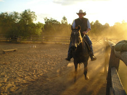 horse back riding experience