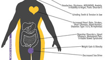 How Stress Affects The Body and Mind